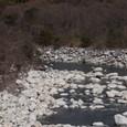 清らかなる木曽川